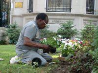 Mr. Bashara gardens