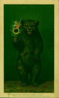 bearcard.jpg
