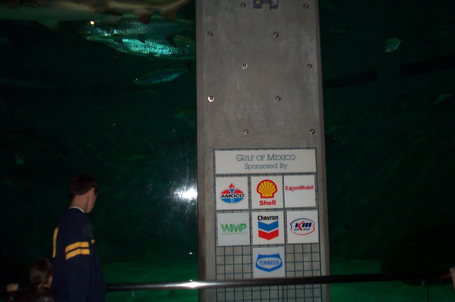 Gulf of Mexico display at the Audubon Aquarium of Americas: sponsored by the oil companies